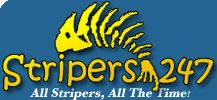 Striped bass bait -Live bait rigging Striper Fishing Bait Rigs - stripers 247.com - live bait for stripers