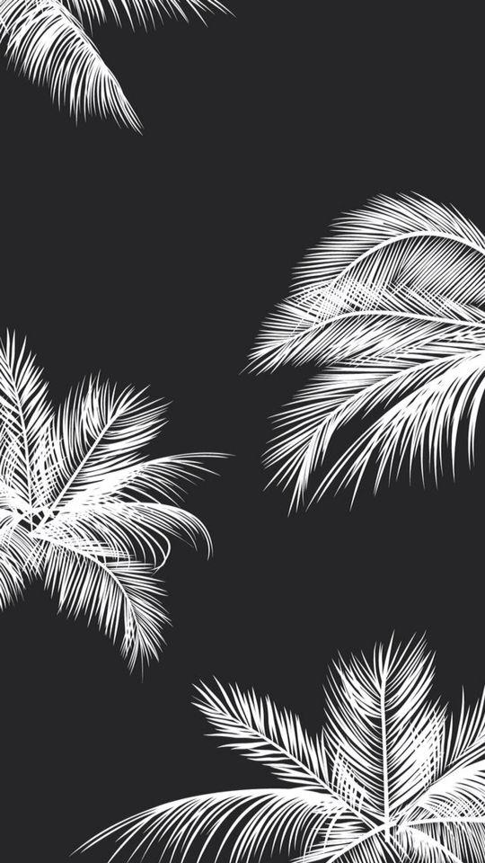 Estampa em preto e branco