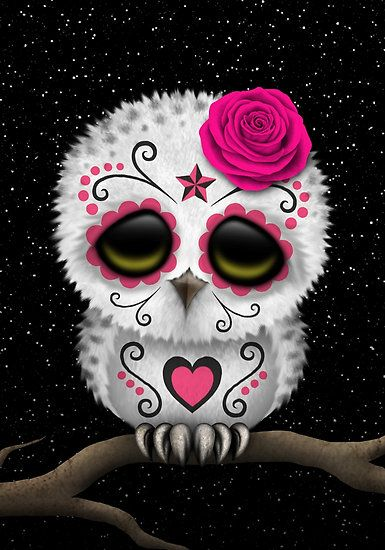 Cute Pink Day of the Dead Sugar Skull Owl by Jeff Bartels.  LOVE this!❤️