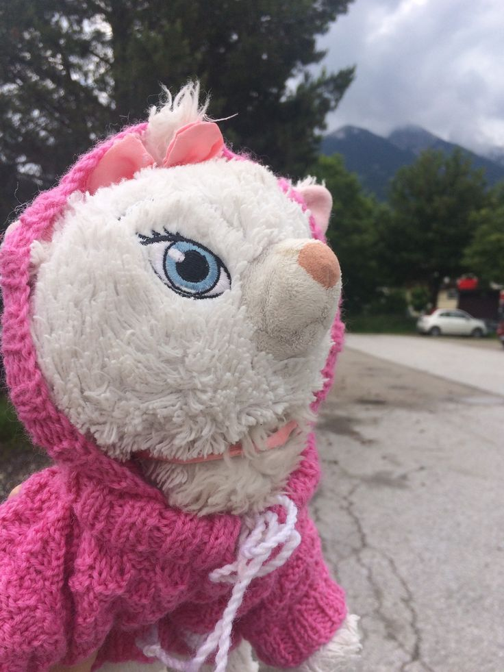 """Lille kattepus"" i Tirol"