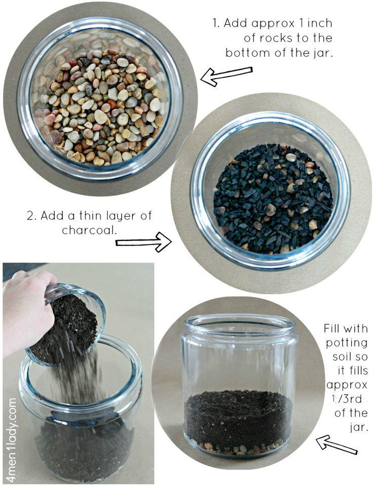 DIY terrarium instructions