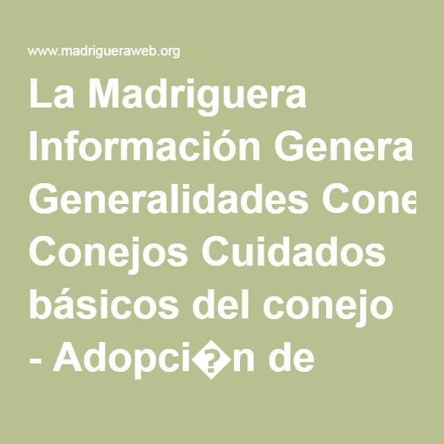 La Madriguera Información Generalidades Conejos Cuidados básicos del conejo - Adopci�n de conejos, roedores y otros animales.