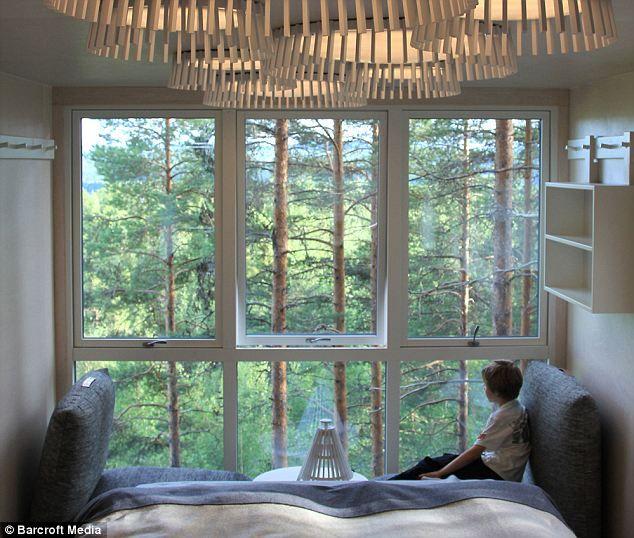 Swedish forest tree house hotel