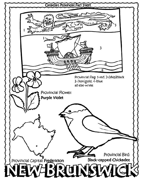 Canadian Province - New Brunswick coloring page