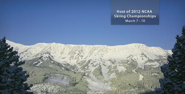 Home mountain - Bridger Bowl - Bozeman, MT