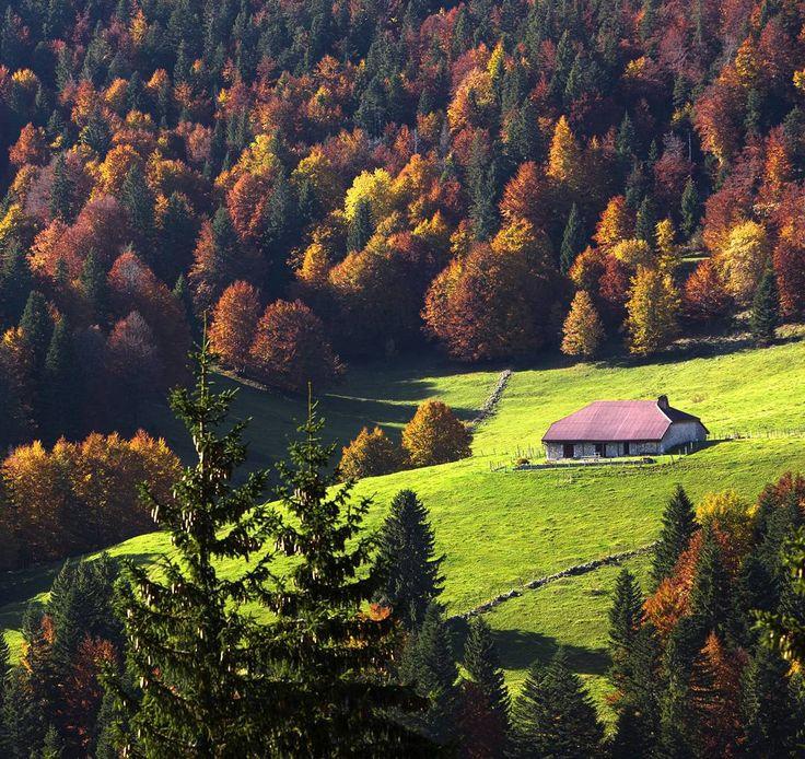 Le Haut-Jura est beau en hiver mais aussi en automne.  La preuve en photo   Jura, France   Photo de Stéphane Godin/Jura Tourisme   #JuraTourisme