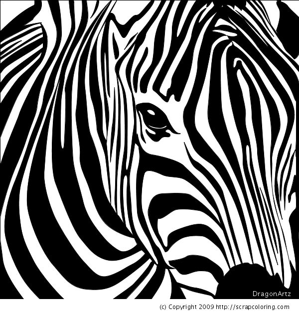 Zebra head coloring page | Coloring Pages | Zebra art ...