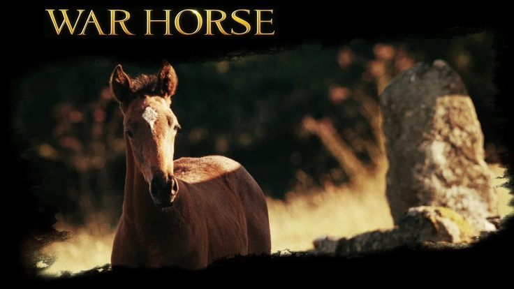 War Horse is a 2011 epic war film adaptation of War Horse, a 1982 children's novel set before and during World War I, by British author Michael Morpurgo, and the 2007 stage adaptation of the same name. It was directed by Steven Spielberg.