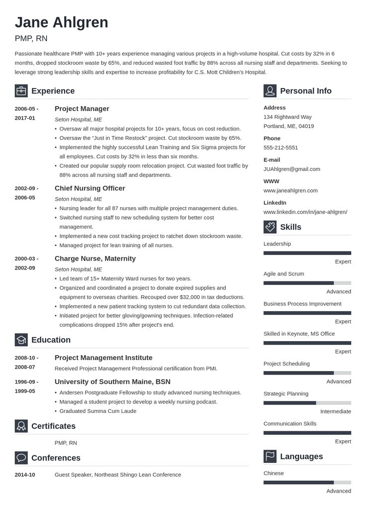plain text resume example template vibes in 2020 Project