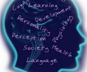 Find Colleges that Offer Psychology Programs #psychology #schools #in #arizona http://cleveland.remmont.com/find-colleges-that-offer-psychology-programs-psychology-schools-in-arizona/  # Psychology Programs What is Psychology? Psychology is the study of the psyche, human behavior, and the effects of environment and other factors upon the mind. Psychologists work with patients in order to address mental health issues, or work in research to experiment and identify the causes of mental health…