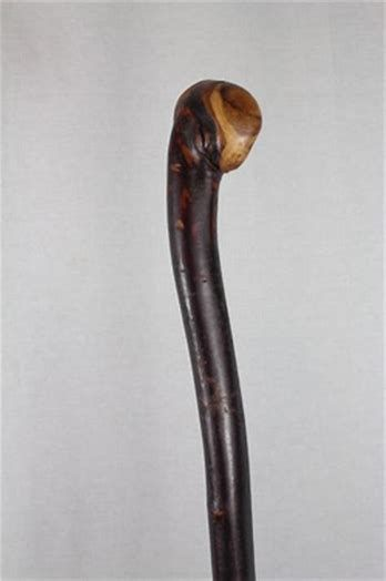 Image result for Extra Long Irish Blackthorn Walking Stick