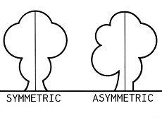 Asymmetrical Balance in Art: Definition, Design & Examples - Video & Lesson Transcript | Study.com