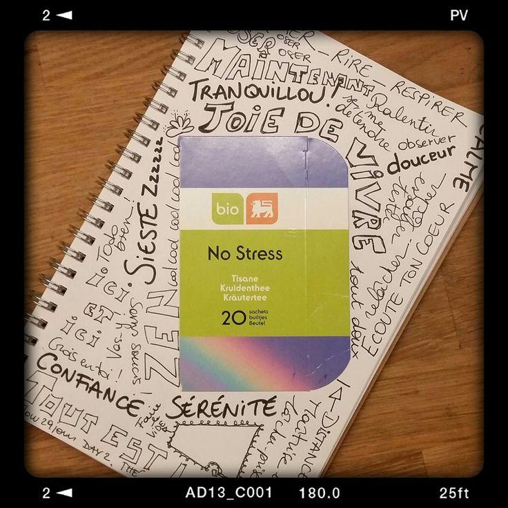Thé. Tisane en fait ;-)  No stress. Et beaucoup d'autres choses ! #Flow29jours  - jour 2 - Challenge photo dans mon journal intime créatif Mon paquet de tisane comme déclencheur de mots sur cette thématique. 8 minutes top chrono