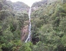 Cascade du diable ..(Tasmanie) ..