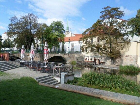 Krásné na parku v Plzni.