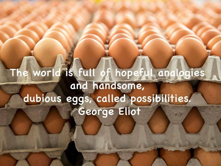 The world is full of hopeful analogies and handsome, dubious eggs, called possibilities. George Eliot #SundayMotivational #Nulaid