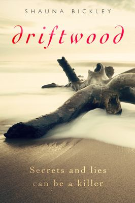Driftwood book cover by Andrew of Design for Writers