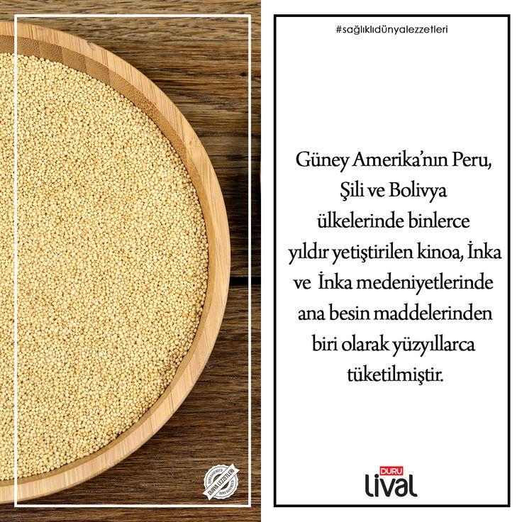 Duru Lival ile dünya lezzetleri sofranızda.  Duru Lival bir Duru Bulgur markasıdır. Alışveriş için web sitemizi ziyaret edin.
