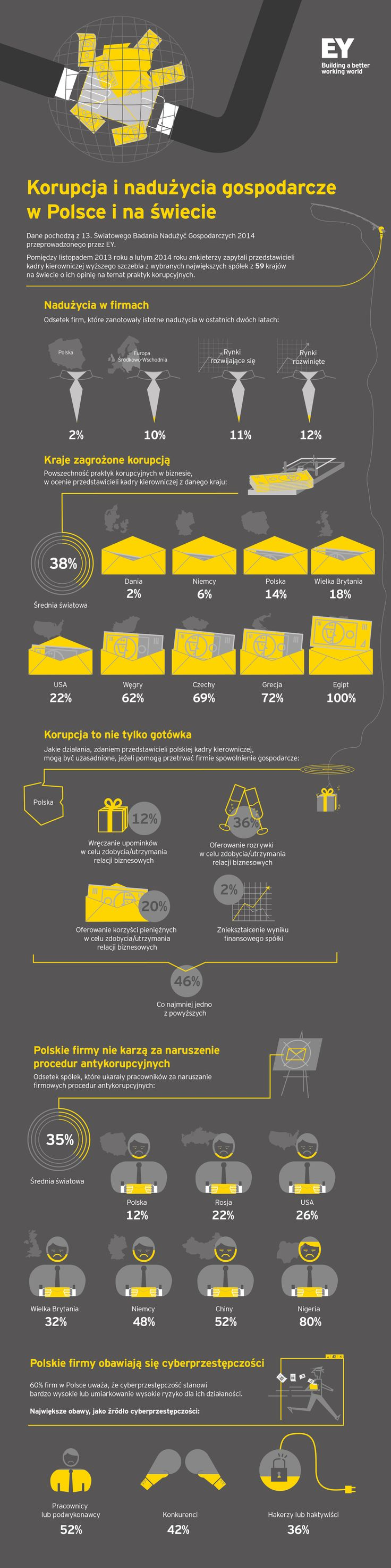13. Światowe Badanie Nadużyć Gospodarczych 2014 - Raport EY