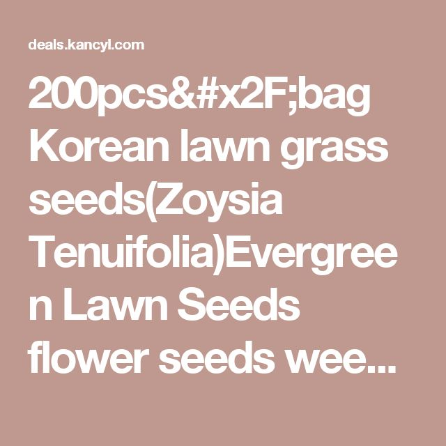 200pcs/bag Korean lawn grass seeds(Zoysia Tenuifolia)Evergreen Lawn Seeds flower seeds weed seeds outdoor plant for home garden