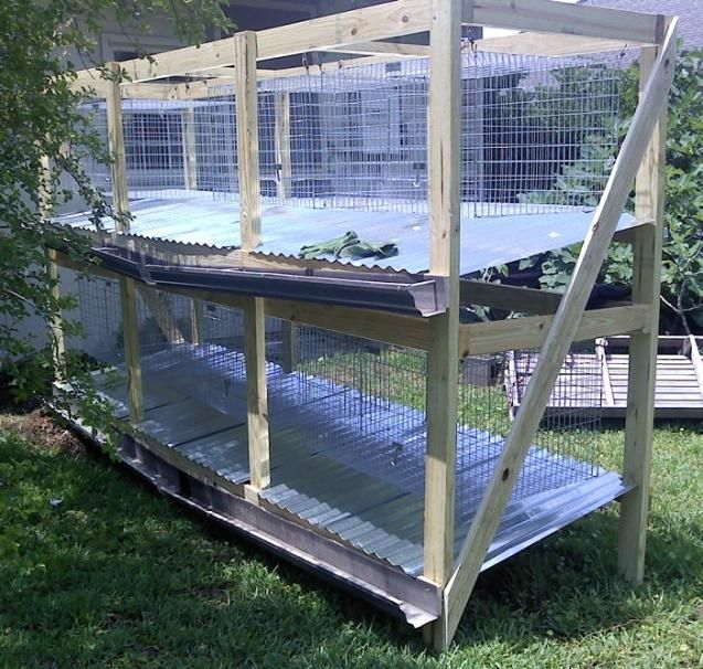 81 best images about backyard meat rabbits on pinterest for Easy diy rabbit cage budget