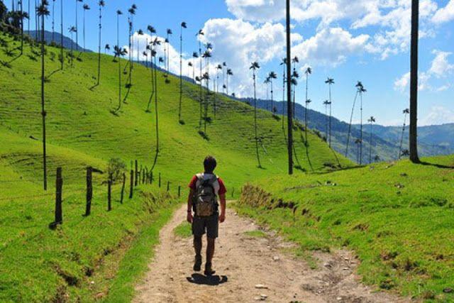 salento-quindio-colombia-turismo-arbolnacional