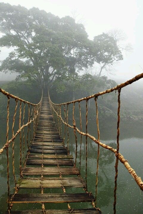 Writing Prompt: Write about how your characters would cross this bridge, if they would cross. What would happen?                                                                                                                                                                                 More