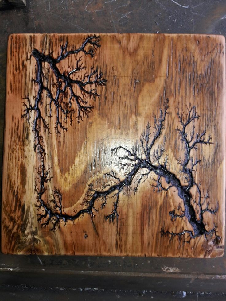 What Are Lichtenberg Figures And How Do We Make Them