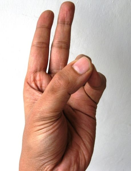 Recharge your inner battery . Join thumb with little and ring fingers and let the magic begin. The Pran Mudra increases vitality, reduces fatigue and nervousness, and improves vision. It is also used against eye diseases. Pran Mudra when combined with Vayu mudra helps to reduce muscular aches and sprains. Make sure you do it for minimum of 15 minutes. Caution: People with Kapha dominant body should refrain from doing Prana mudra. It should be avoided if you are suffering from cough and cold.
