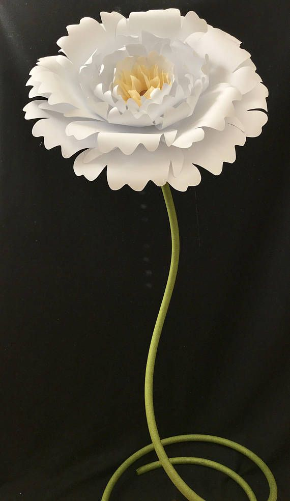 Paper Flower With Stem Free Standing Paper Flowers Backdrop