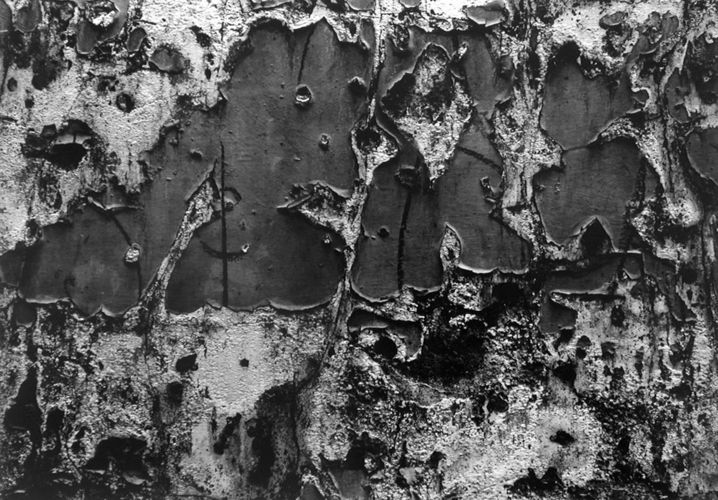 Aaron Siskind's Romantic Notions of Decay: Ironic charm in cracked surfaces – inspired by Abstract Expressionism