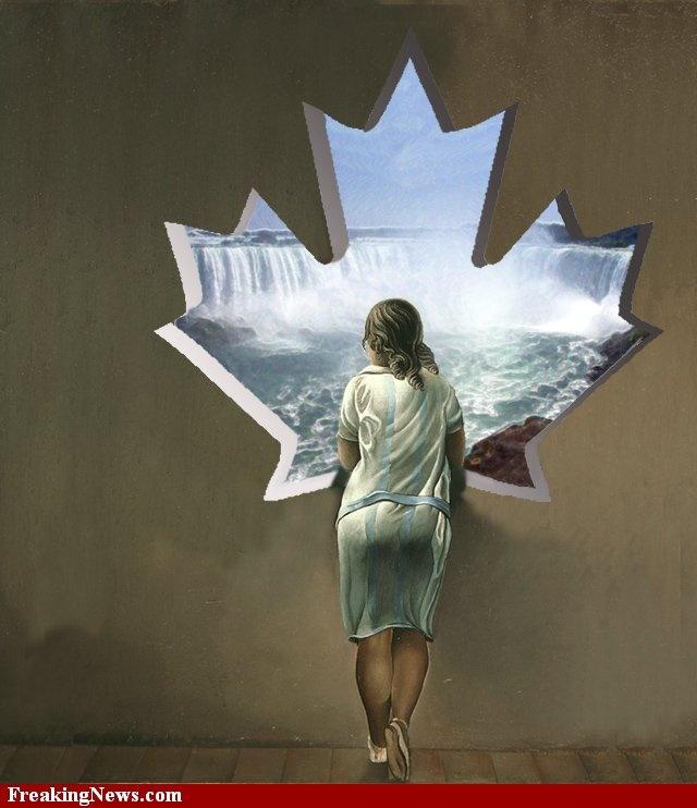Dali Canada pictures