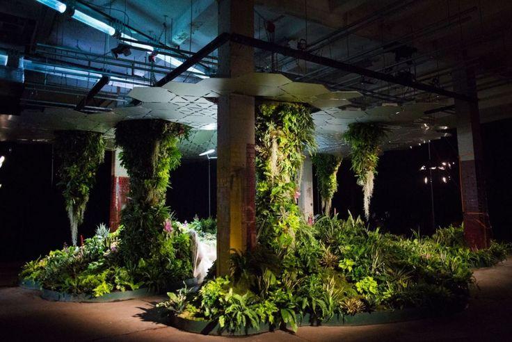 Lowline, in mostra il primo parco sotterraneo al mondo. Ananas, fragole e alberi vivono grazie a... sole e crowdfunding - Il Fatto Quotidiano