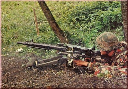 Swiss Army Orginal Postkarte Mitrailleur Mg 51