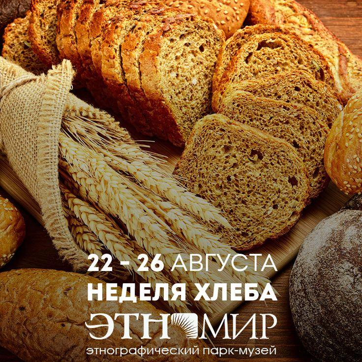Всё о хлебе и хлебопечении - от зерна до каравая Хлеб - ежедневная пища на нашем столе: у кого-то это буханка бородинского или лаваш, у кого-то - рейкялейпя или пумперникель. Как бы хлеб ни пёкся, какого бы вида он ни был, в любой стране к нему относятся с уважением, и у каждого народа есть свои приметы, поговорки, поверья, рецепты связанные с хлебом. «Хлеб-батюшка», «Отец», «Кормилец», - так ласково называли хлеб на Руси. Для наших прабабушек и прадедушек хлеб был даром и благодатью…
