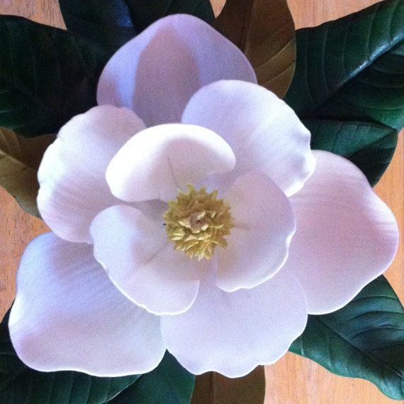 Gum Paste Southern Magnolia Flower Made by SwankySugarCreations