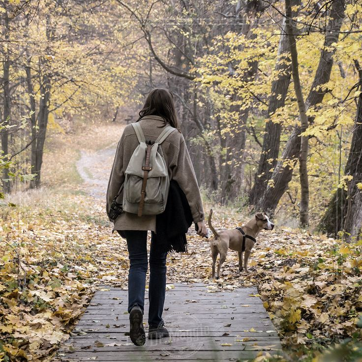 """""""They motivate us to play, be affectionate, seek adventure and be loyal."""" - Tom Hayden #doglove #motivationmonday"""