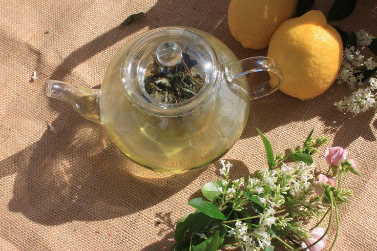 ✿ Bule em vidro, encantador e subtil, com infusor integrado também em vidro. - Inspired by Lemon