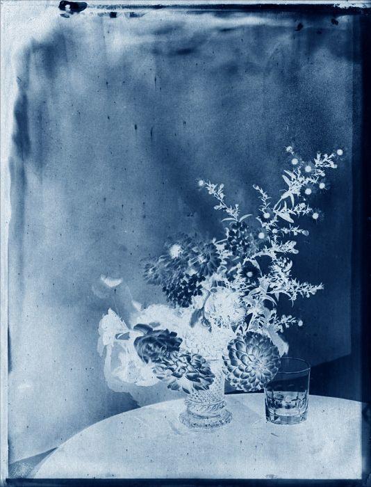 20 best cyanotypes and printmaking images on Pinterest Cyanotype - fresh blueprint diazo paper