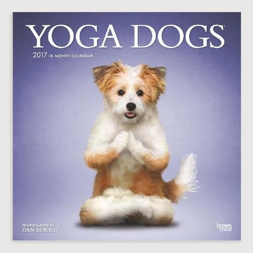 Dog Calendar Ideas : Best yoga dog ideas on pinterest standing poses