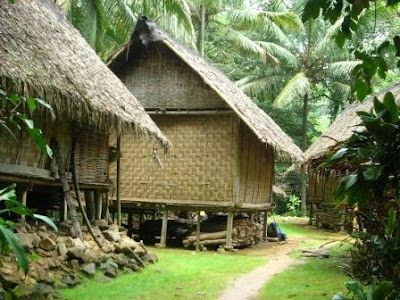 13. Province Banten : Baduy Traditional house