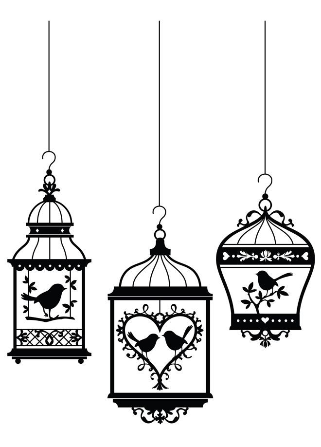 Beautiful Birdcages