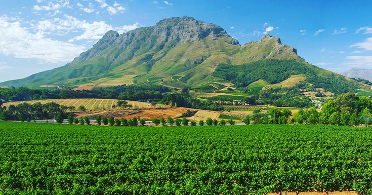 The beautiful #Franschhoek #wine #winevalley #southafrica #westerncape #holiday #vacation #friends #family #blogs #sa https://sa-rail.co.za/franschhoek/