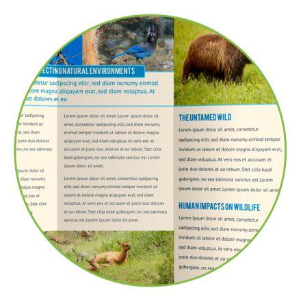 brochure maker online