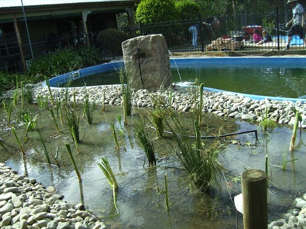 17 Best Images About Pool On Pinterest Pools Swimming Pools And Solar Pool Heater