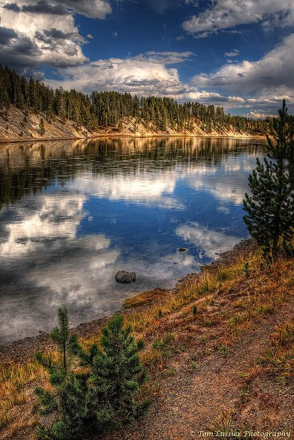 366 best fly fishing vistas images on pinterest fishing for Canyon lake fishing spots