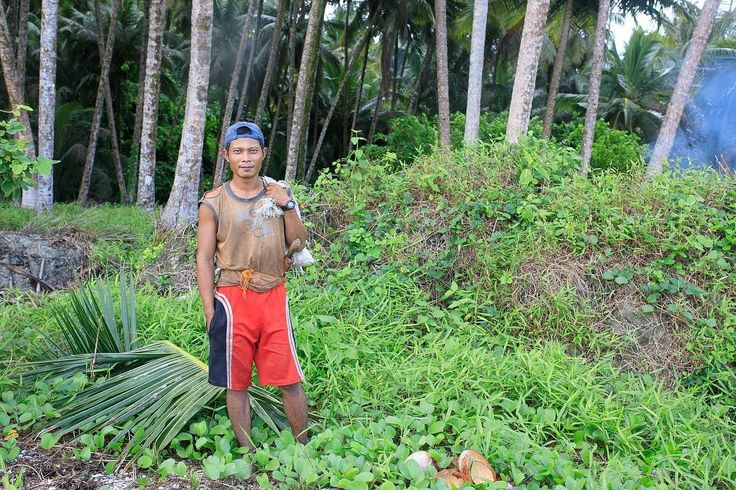 He was collecting coconuts on a beach on Pulau Nias  Sumatra  #sumatra #nias #coconut #beach #niasutara #sumatera #indonesia #indo #indonesien #indonesiaparadise #pulaunias #niassurf #tuktuksumaterautara #sumatraautara #dslrphotography #dslr #canon #photography #photooftheday #photo #picoftheday #pictureoftheday #austrianphotographer #austrianphotographers #austrianart #kunsttirol #thepoint