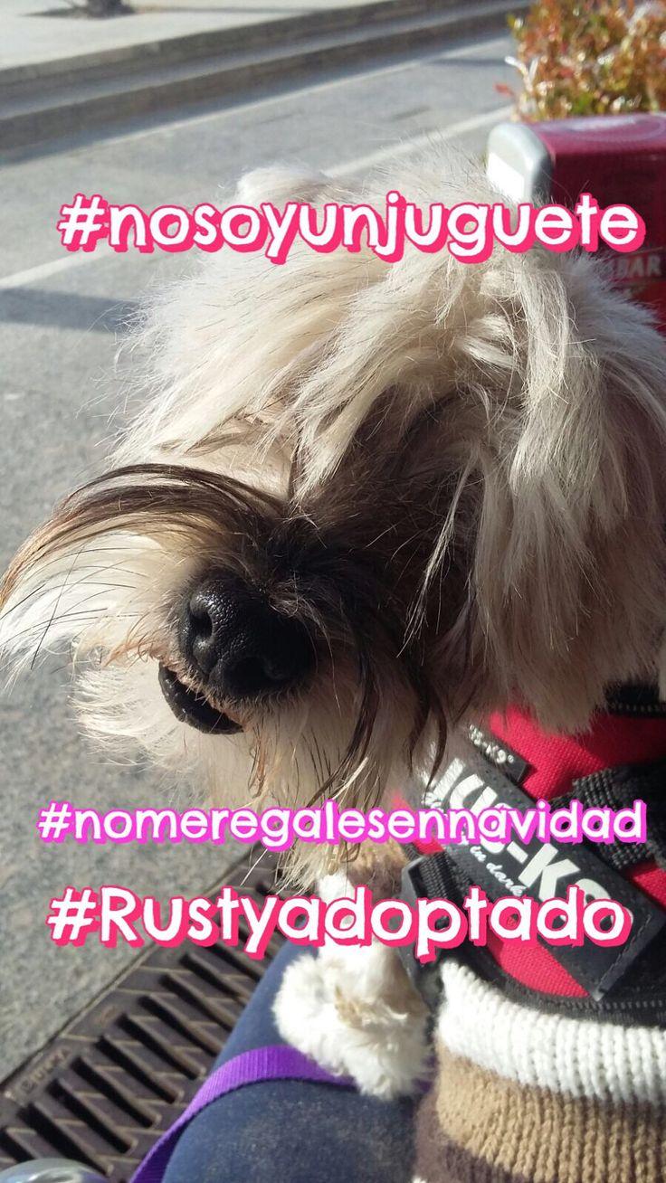 #nosoyunjuguete #villapeixiño #nomeregalesennavidad