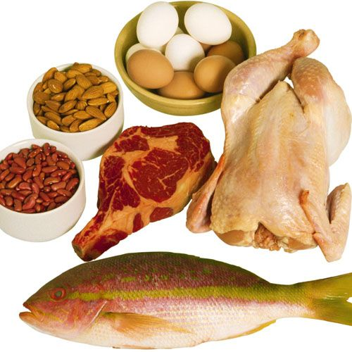 #Proteins are the building blocks of the body that helps in #muscle growth and repair and it is important to include more proteins