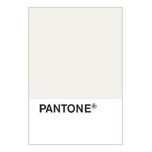 Pantone And Ivory On Pinterest